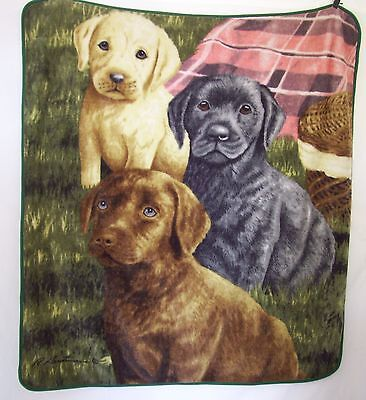"Labrador Retriever Dogs Puppies Blanket Throw R Hautman Plush 52"" x 56"" Hanging  for sale  Shipping to India"