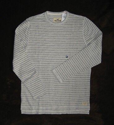 NWT Mens Shirt HOLLISTER Abercrombie Cream/Gray Stripe Crew T-Shirt  M L