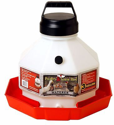 Little Giant Large Capacity Waterer Durable Dent-resistant Whandle 3 Gallon