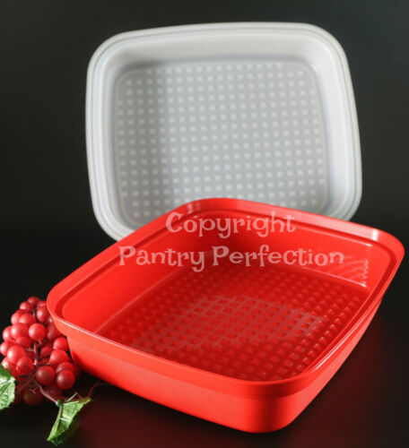 Brand New TUPPERWARE Season Serve Container LARGE Full Size Marinade Container H