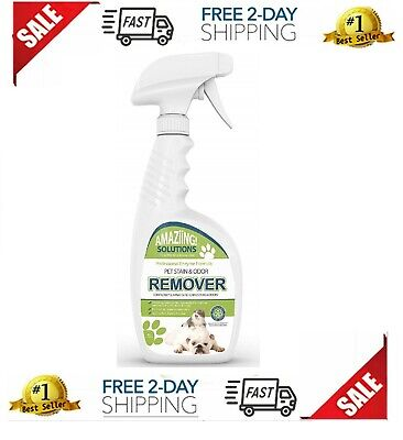 Best Pet Stain Remover and Odor Eliminator Carpet Cleaner for Dog Urine and