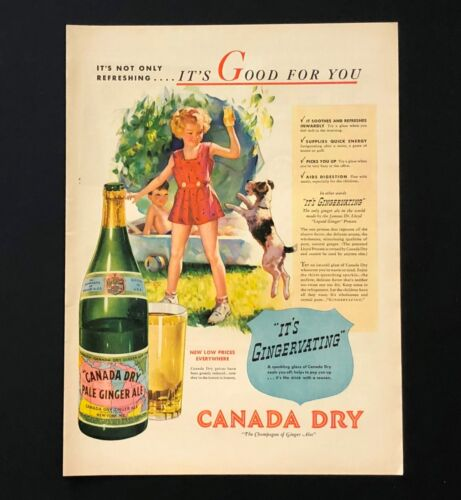 1937 Canada Dry Ginger Ale Advertisement Soda Pop Wire Fox Terrier Dog Print AD