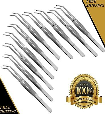 10 Premium Grade London Collegecotton Dressing Pliers 6 Dental Instruments