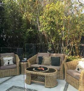 5 Pce Cane Furniture Chairs Wicker Rattan  Outdoor Lounge Chair Sofa