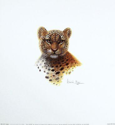 WARWICK HIGGS Big Purr LEOPARD Wildlife art Print new SIZE:36cm x 33cm  RARE