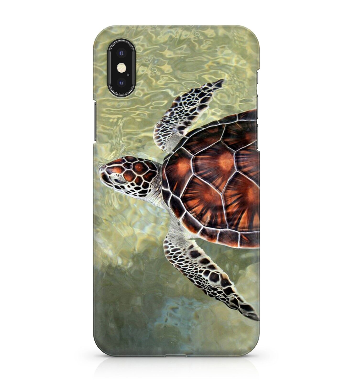 Brown Coloured Sea Turtle Animal Wavy Arctic Ocean Water