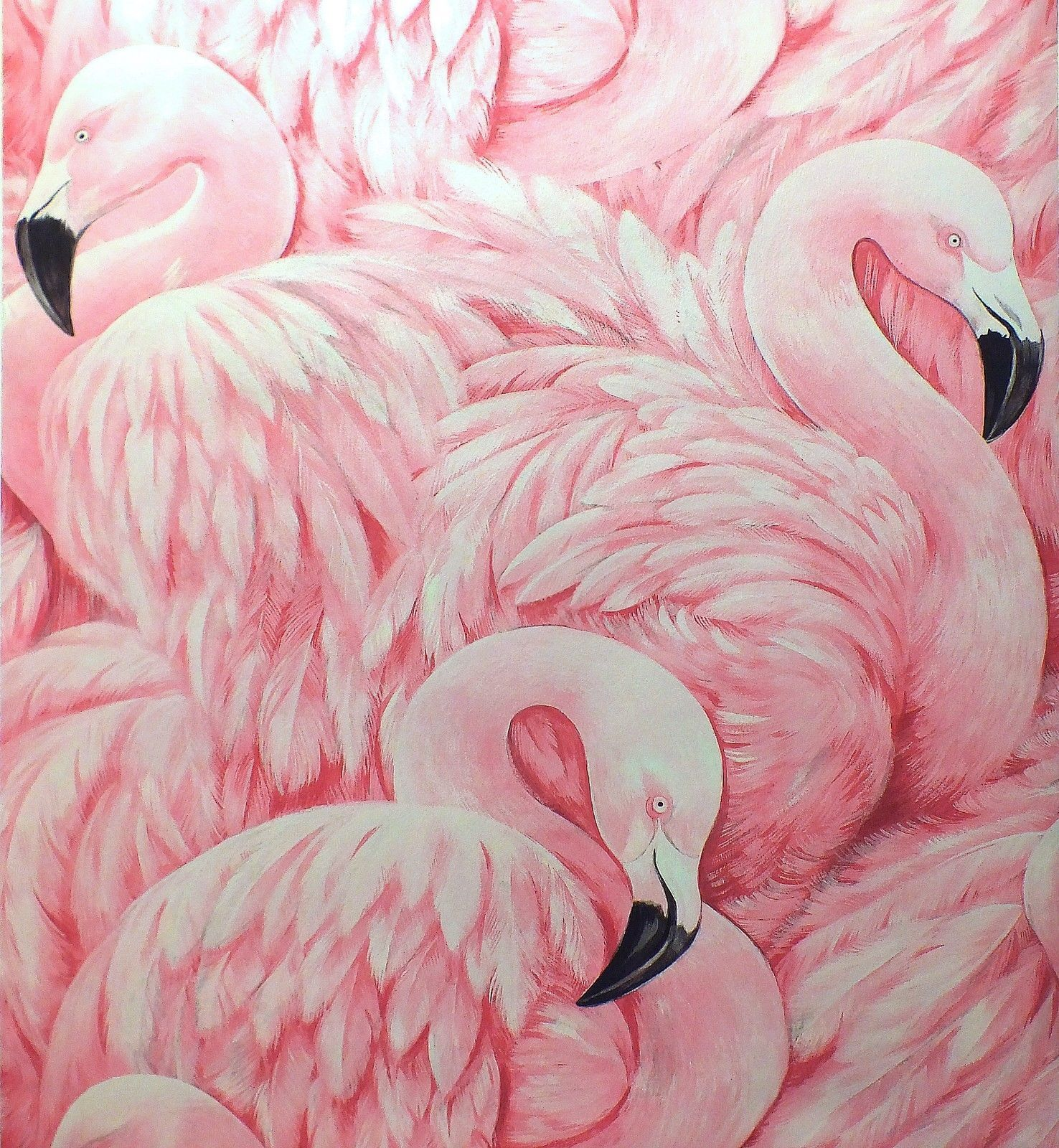 papier peint rasch luxe textur flamant rose plumes rose noir 277890 ebay. Black Bedroom Furniture Sets. Home Design Ideas