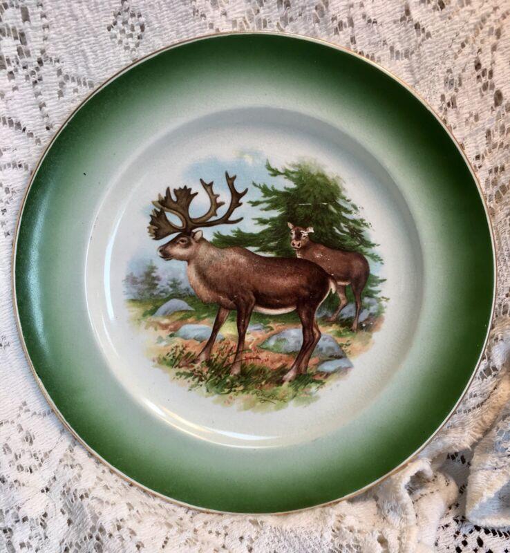 "Buffalo Pottery Moose Stag Doe Green 9.25"" Plate"