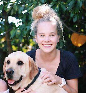 Dog walker in Glebe and surrounds Glebe Inner Sydney Preview