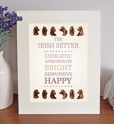 Irish Setter 8 x 10 Free Standing BREED TRAITS Picture 10x8 Dog Print Fun Gift