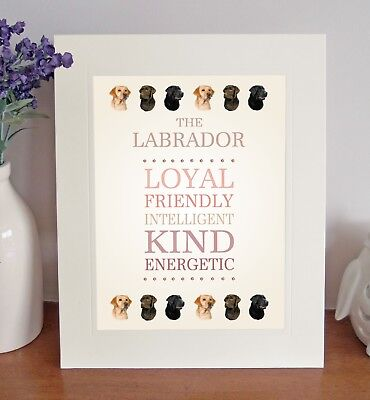 Labrador Retriever 8 x 10 Free Standing BREED TRAITS Picture 10x8 Dog Print Gift