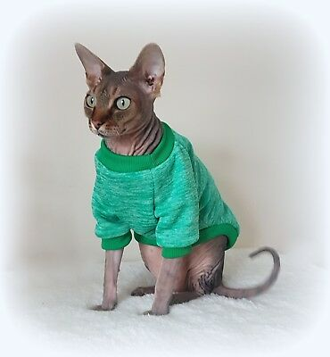 long sleeves MARL GREEN cat jumper for a Sphynx  cat, cat clothes, sweater
