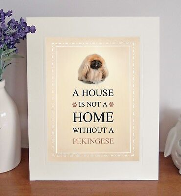 Pekingese Free Standing A HOUSE IS NOT A HOME Picture Mount Fun Novelty Gift