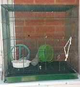 MIce Cage Kenwick Gosnells Area Preview