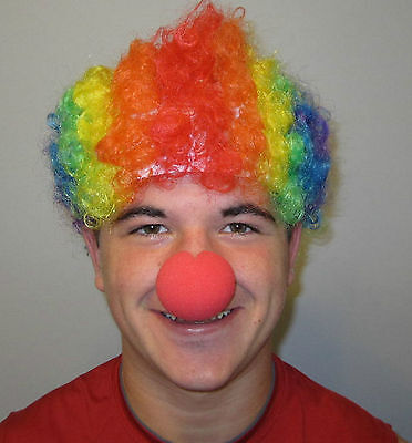 1 NEW KIDS RAINBOW CIRCUS CLOWN WIG AND 1 NEW RED FOAM CLOWN NOSE COSTUME  - Kids Clown Wigs