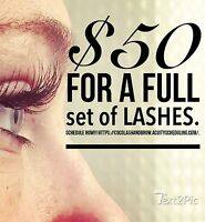 Full sets of lashes for $250