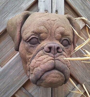 Hund Hunde Kopf Boxer Relief Wandbild Sandstein Antik Look Steinguß S 21 ROT