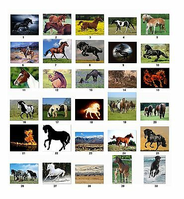 30 Personalized Return Address Labels Horses Buy 3 Get 1 Free H5