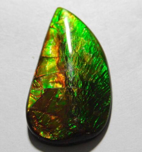 18.20 Cts Natural Canadian Ammolite Cabochon Loose Gemstone 31.6X16.4X5 MM B-03