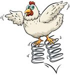 Spring Chicken Electrics