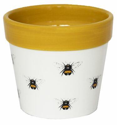 Ivyline Bumblebee Design Cacti Flower Planter Plant Pot with Mustard Detail 13cm