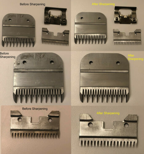 Professional Clipper Blade Sharpening Service - Andis, Oster, Wahl, Laube, Geib