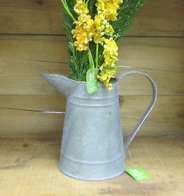 "RAZ Imports Galvanized Iron 6.5"" Pitcher w/ Gold Trim - Perfect Flower Pot!"
