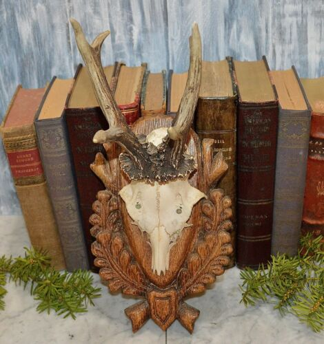 Vintage German Black Forest Deer Antlers Carved Wood Shield Trophy Mount