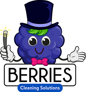 Berries Cleaning Solutions Queens Park Canning Area Preview