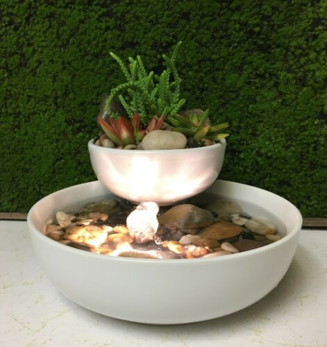 Fountain Tranquility Tabletop Natural Water Garden Fountain With Live Succulents