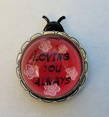 v Loving you always LOVE BUG LADYBUG FIGURINE inspirational message sweetheart
