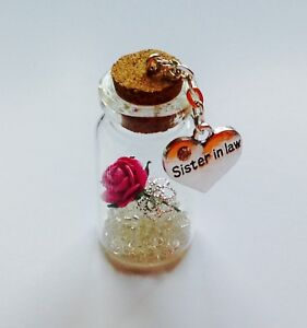 Sister In Law Little Treasure Miniature Gift Keepsake For Any Occasion