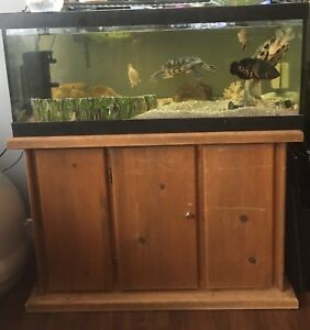 50 gallon aquarium and stand for sale :)