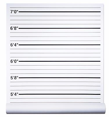 Mug Shot Background (Mugshot Backdrop - Height Chart Poster - Crime Scene Jail Police Supplies)