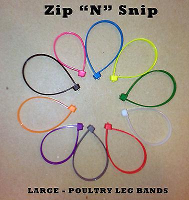 60 Large Zip N Snip Poultry Leg Bands Turkey Geese Ducks