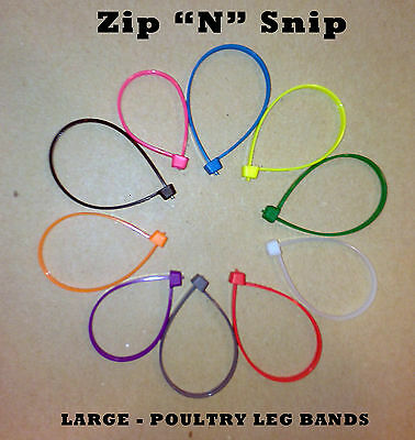 100 Large Zipnsnip Poultry Leg Bands Fits Turkey Geese Ducks Chickens