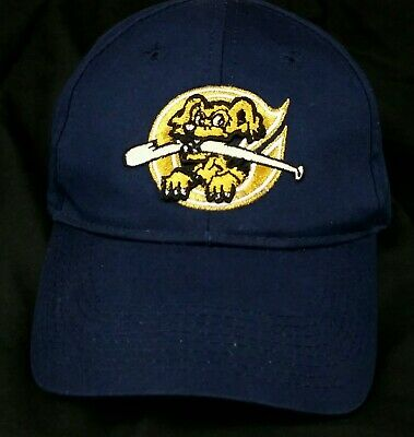 25781cbc724ec Minor League Baseball Charleston RiverDogs OC Sports Hat   Cap Youth Kids  EUC