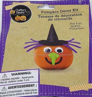 New Halloween Pumpkin Decorating Kit Makes 1~ Witch FREE SHIPPING