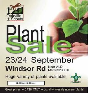 Spring Plant Sale - Supporting our local Scout Group McGraths Hill Hawkesbury Area Preview