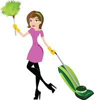 Cleaning lady or cleaning team for you!