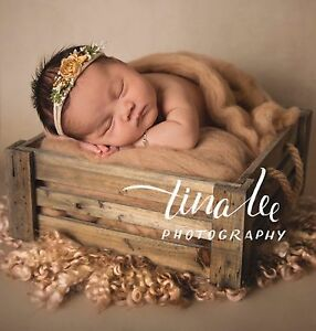 NEWBORN SESSION SPECIAL | Tina Lee Photography | Brisbane Warner Pine Rivers Area Preview