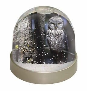 Stunning Owl in Tree Photo Snow Globe Waterball Stocking Filler Gift, AB-87GL
