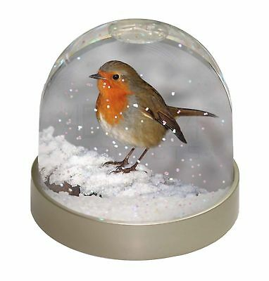 Robin on Snow Wall Photo Snow Globe Waterball Stocking Filler Gift, AB-R15GL