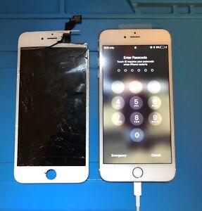 Premium Quality iPhone & iPad Repairs, Gold Coast, Ormeau, Pimpama