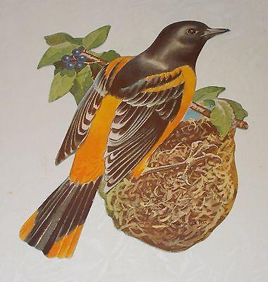 """VTG DENNISON SPRING ORIOLE BIRD NEST DIECUT CARDBOARD DECORATION 7"""" MINT NOS"""