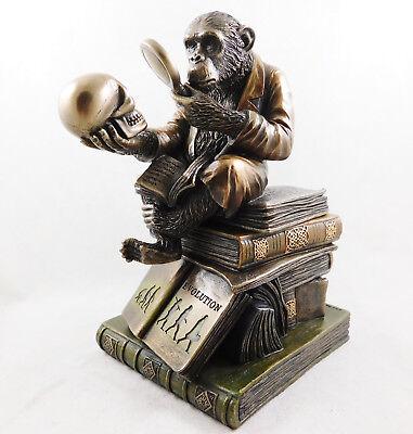 DARWIN'S MONKEY THEORY OF EVOLUTION BY DARWIN BOX FIGURINE CHIMPANZEE STATUE NEW
