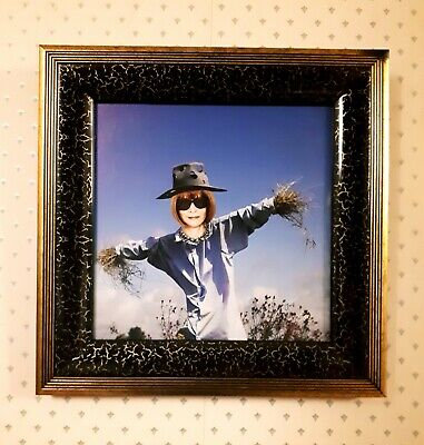 Original Collage Street Art (Framed) 'Scarecrow Anna' by Joyce & Vicky