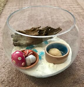 """""""Crazy Crab"""" Hermit Crab glass bowl tank plus accessories Canning Vale Canning Area Preview"""