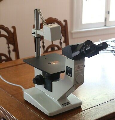 Fisher Micromaster Inverted Binocular Microscope Fw00-42-1005 - Made In Germany