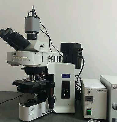 Olympus Microscope Bx61 Phase Contrast